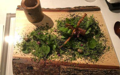 Den ursprünglichen Geschmack der Natur neu entdecken – Satoyama Cuisine von Yoshihiro Narisawa